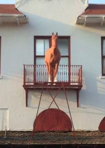 caballo chimal