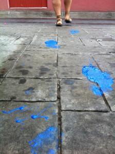 chimal pisadas azules