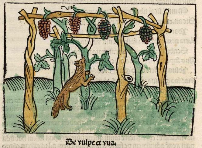 Zorra y uvas