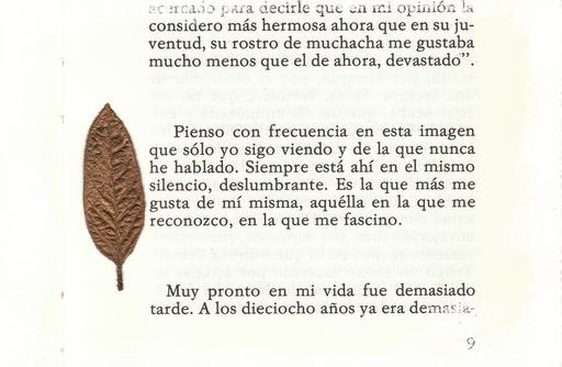 parrafo1