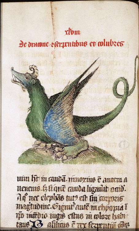 """Lambert, Canon of Saint-Omer. Dragon from the Liber Floridus (""""Book of Flowers""""), c. 1090-1120. Copy from 1460."""