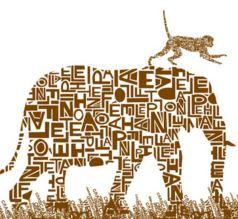 elefante-simio