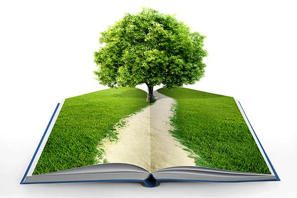 El d a mundial del medio ambiente y la literatura tulectura - Humidificar el ambiente ...