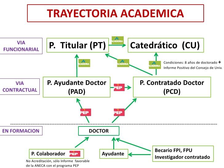 Modelo de la trayectoria profesional y académica del Personal docente e investigador en la Universidad